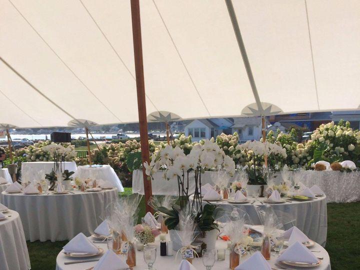 Tmx Img 4729 51 1897631 157428709377248 North Hampton, NH wedding florist