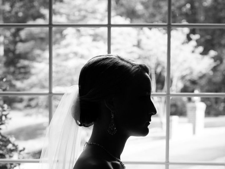 Tmx Fairfax Bride Silhouette Veil 51 999631 Fairfax, VA wedding photography