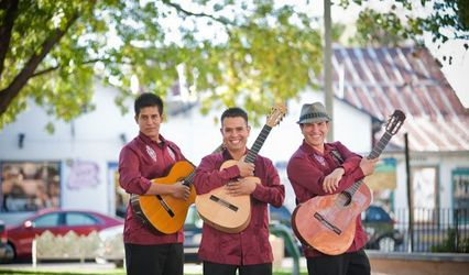 LOS AMIGOS Authentic Mexican and Latin Music