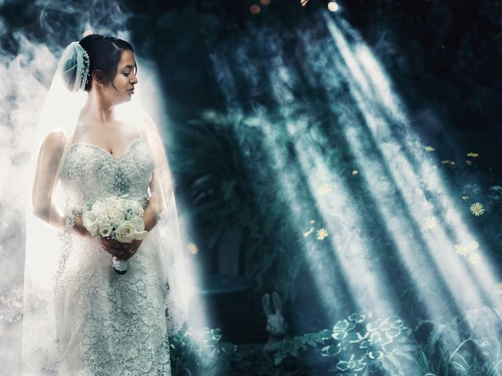Tmx 5d862101 44a6 4b95 93ea 6cee1dead5a3 51 52731 Wheeling, IL wedding photography