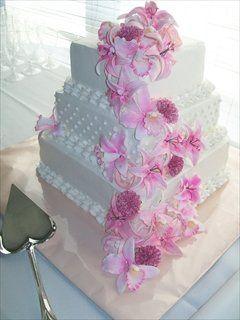 Tmx 1308839235262 2f790ede3b1140bd9bd376cc30243277 Stedman wedding cake