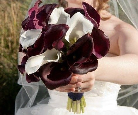 Maroon and white flower