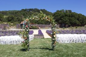 The Lavender Labyrinth and Flower Garden