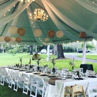 Tmx Wed 26 51 690931 V1 Orlando, FL wedding planner