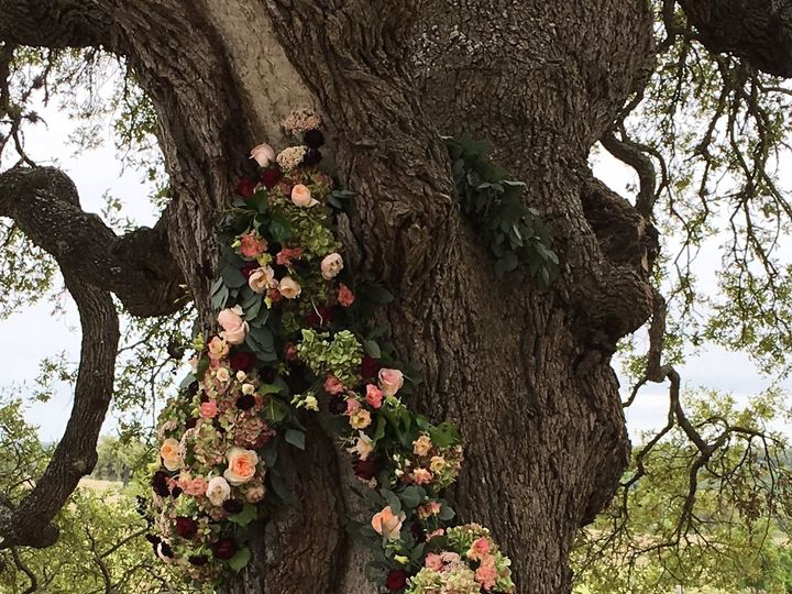 Tmx 1523575565 12bc509ad46157be 1523575563 Bc4ee913ae4d450f 1523575540514 7 Amytreeclose Dripping Springs, TX wedding venue