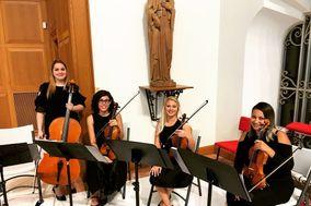Assai Event Musicians