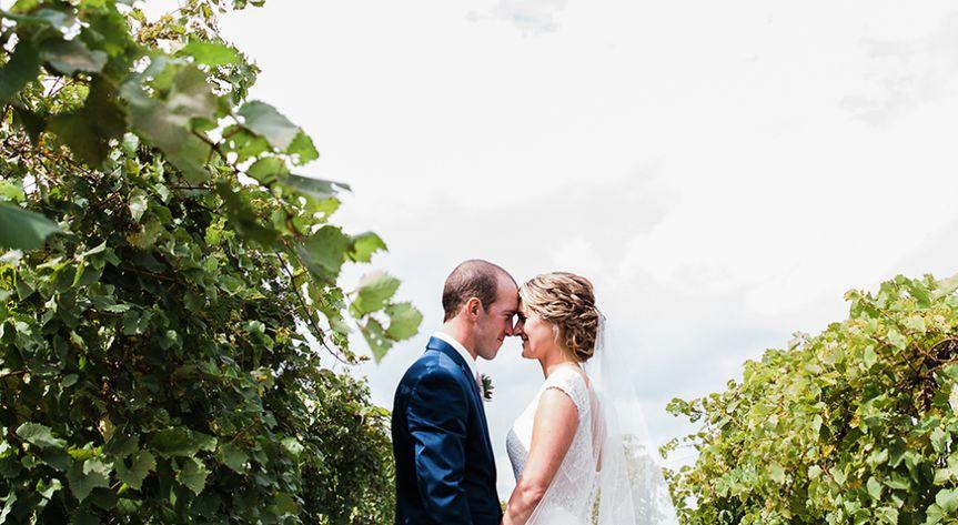 Kissing in a vineyard