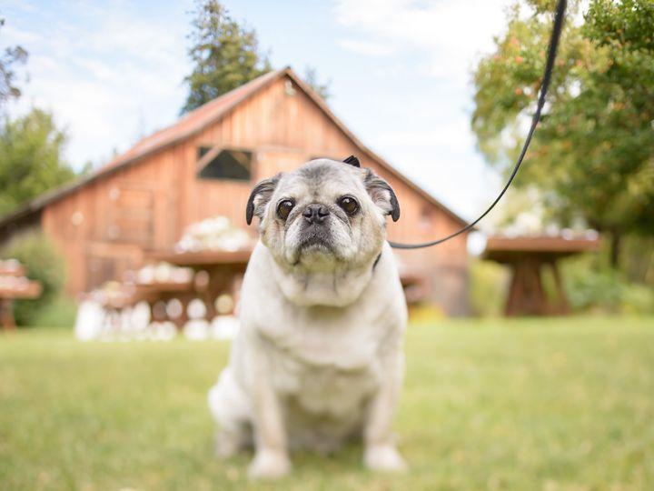 Tmx 0190 51 208931 V1 Arroyo Grande, CA wedding photography