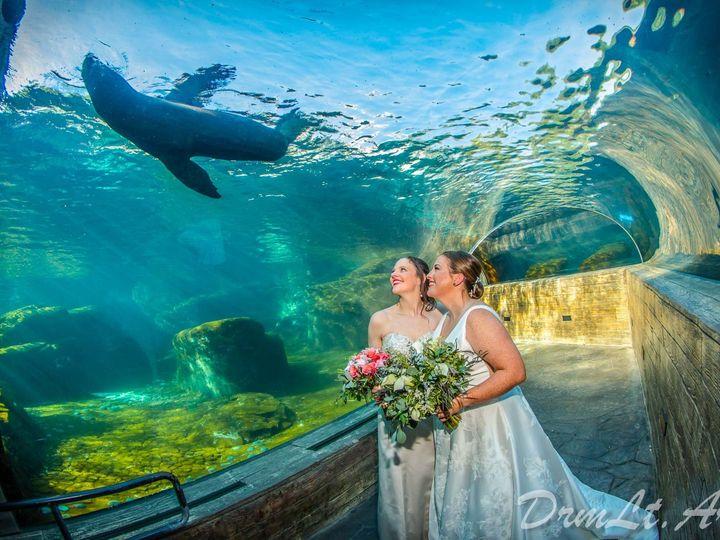 Tmx Dlamidr 0666 51 738931 158318583154717 Saint Louis, MO wedding photography