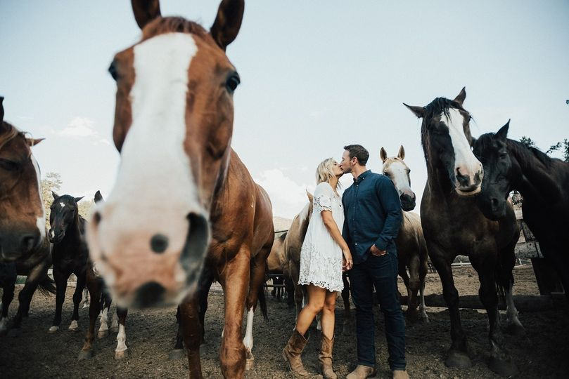 Horses and engagement