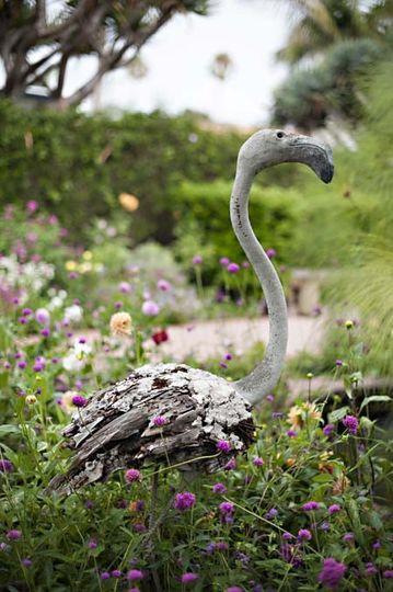 flamingoreduced