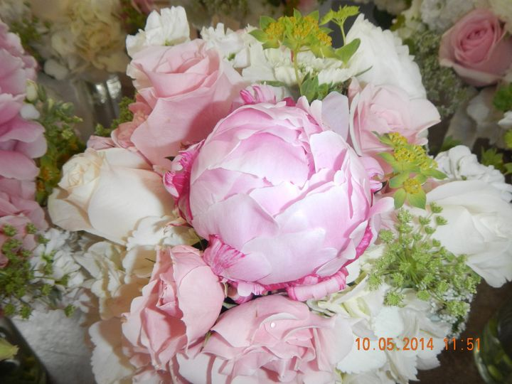 Tmx 1400247669705 Dscn133 North East, Maryland wedding florist