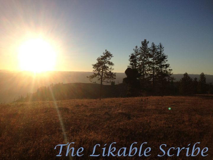 The Likable Scribe