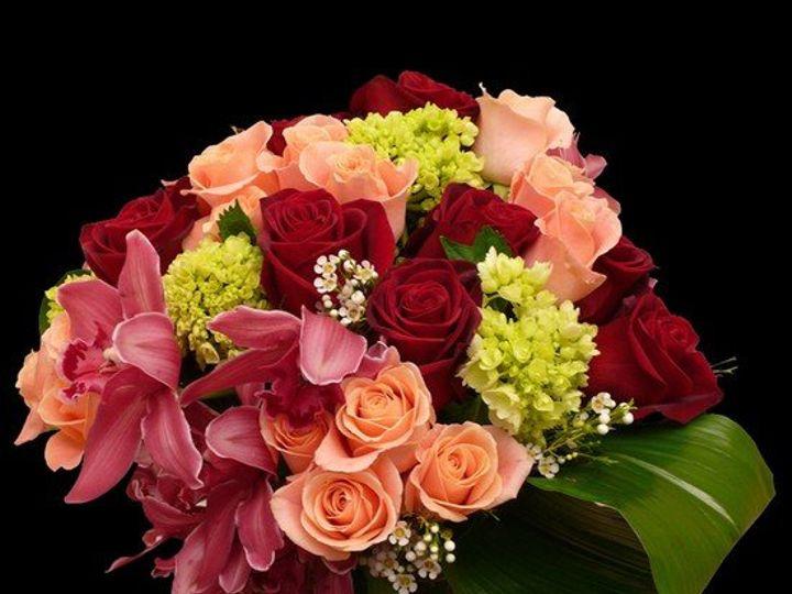 Tmx 1342056686210 Cubeflowers Swedesboro, NJ wedding florist