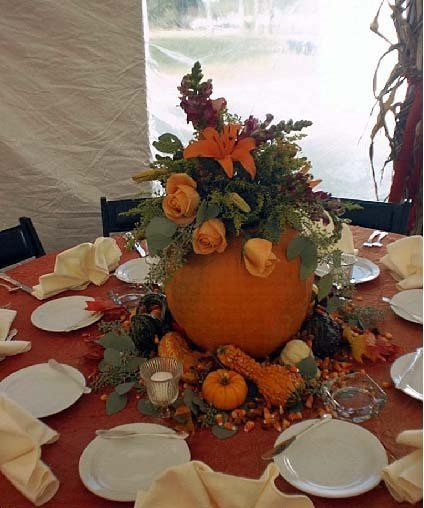 Tmx 1342056723173 Pumpkin Swedesboro, NJ wedding florist