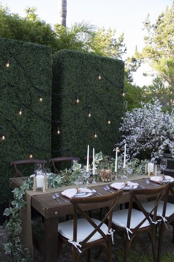 Our hedges make the perfect backdrop and add privacy