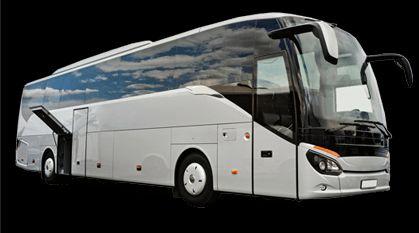 Tmx Bus 1 51 1024441 Austin, Texas wedding transportation