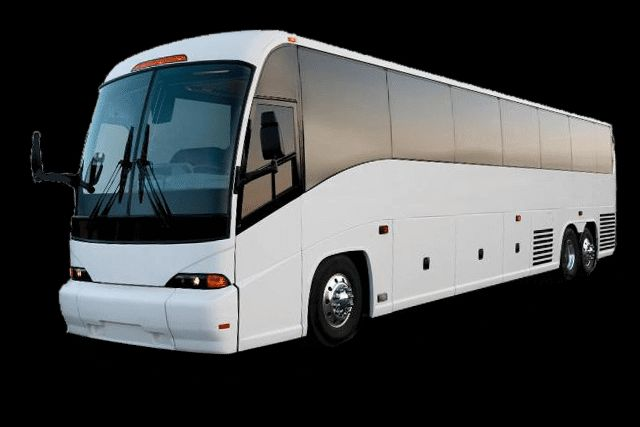 Tmx Bus 2 51 1024441 Austin, Texas wedding transportation