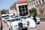 New Jersey Limo Bus & Limousine image