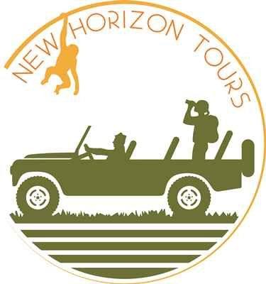 Tmx New Horizon Tours Logo 2 51 1040541 Virginia Beach, VA wedding travel