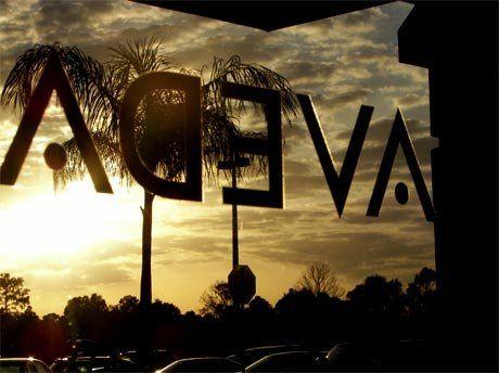 avedawindow