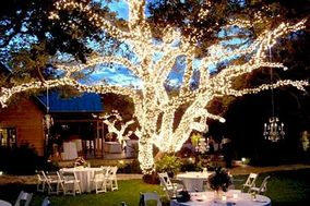 Noel Christmas/Wedding Light Professional, Inc.