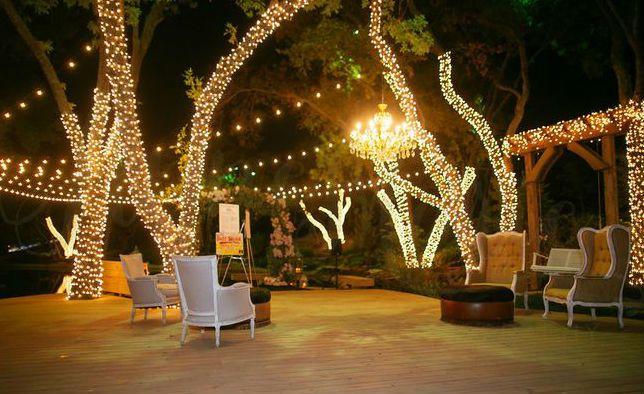 Tmx Wedding Lights Wrapped Trees Chandelier Bg 51 1985641 160178477432810 Miami, FL wedding eventproduction