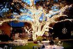 Noel Christmas/Wedding Light Professional, Inc. image