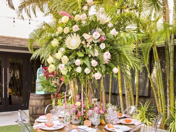 Tmx Img 9011 51 790741 158888158542577 Miami, FL wedding planner