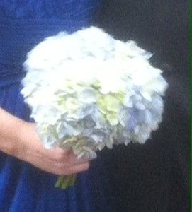 Tmx 1468084400034 Bridesmaid Fresh Hydrangeas Bouquet Tampa wedding florist