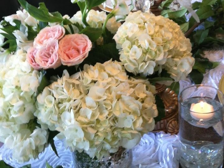 Tmx 1470875313744 Fresh Hydrangeas  Roses Tampa wedding florist