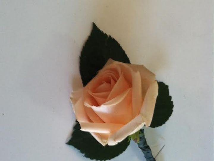Tmx 1475412461995 Fresh Rose Boutonniere Tampa wedding florist
