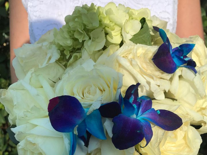 Tmx 1491090611514 Roses  Orchids Cascading Bridal Bouquet Tampa wedding florist