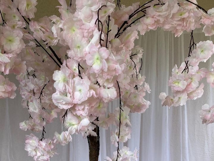 Tmx Cherry Blossom Tree Centerpiece 51 611741 158187376535533 Tampa wedding florist