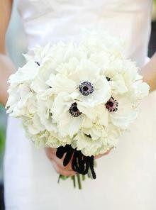 bride220w