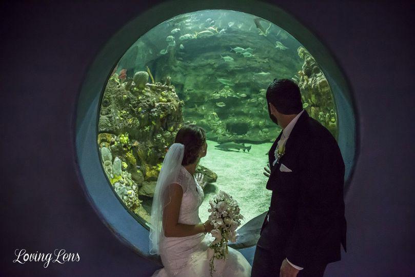 fort fisher aquarium wedding 2