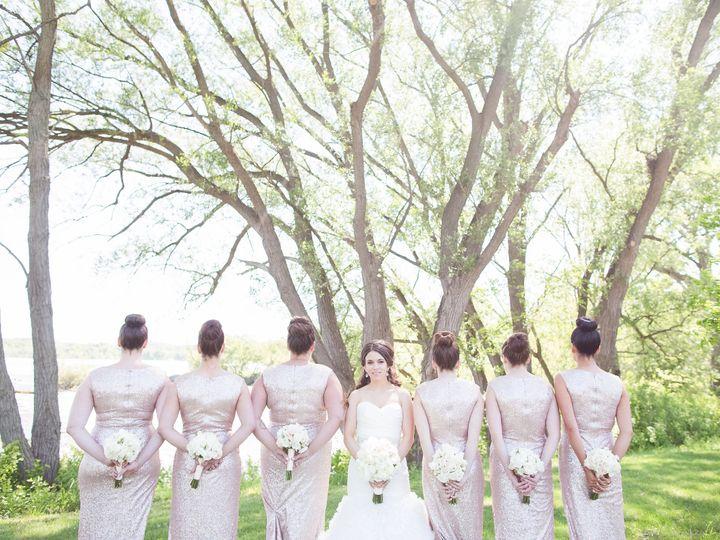Tmx 1447998098290 Courtney And Jack Wedding Bridal Party 0010 Lockport, NY wedding planner
