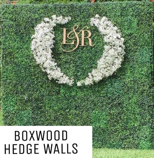 Accented with decoration hedge