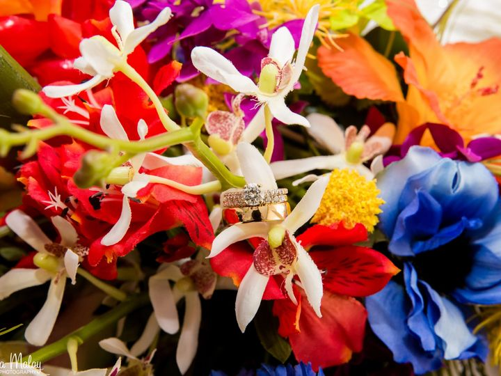 Tmx 011 51 25841 158748629748920 Marco Island, Florida wedding florist