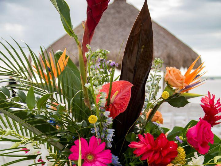 Tmx 223 51 25841 158748620851744 Marco Island, Florida wedding florist