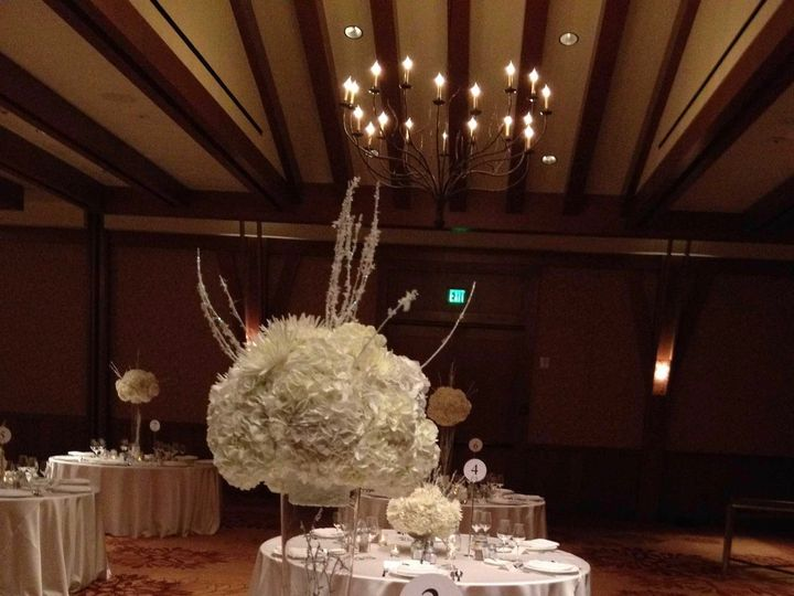 Tmx Img 0199 51 197051 157775842417587 Truckee, CA wedding florist
