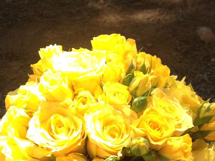 Tmx Img 1275 51 197051 157774904470554 Truckee, CA wedding florist