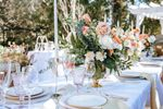 Belle Events & Co image