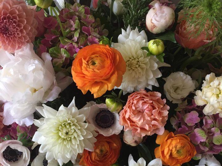 Tmx Img 9401 51 1863151 1567125180 Madison, WI wedding florist