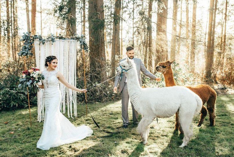 Chantelle's Bridal Salon WA