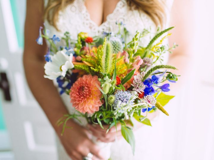 Tmx 1480708603199 Allegraderrick 102 Charlevoix, MI wedding planner