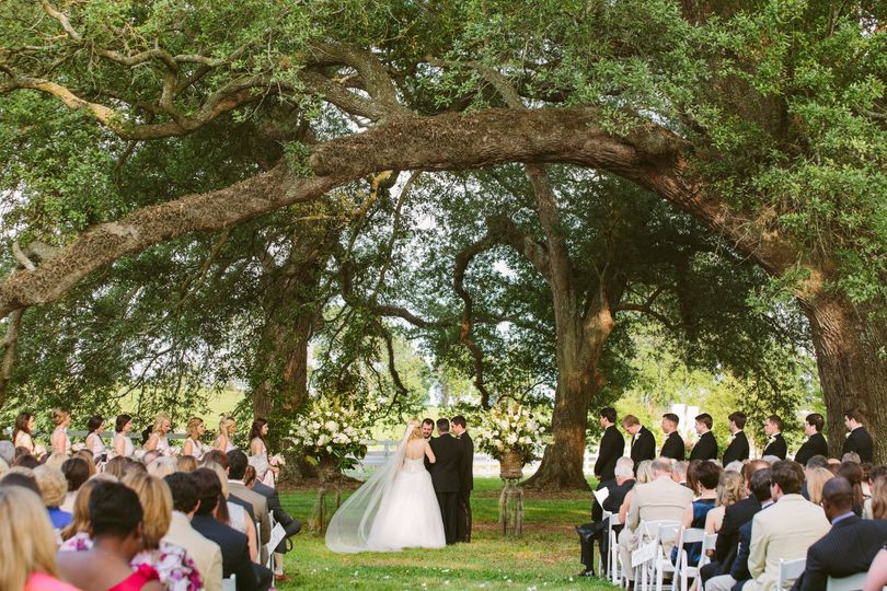 Wedding ceremony amongst the trees