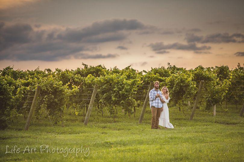 Groom and bride in the vineyard