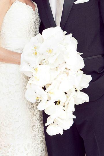 trochta 39 s flowers and garden center flowers oklahoma city ok weddingwire. Black Bedroom Furniture Sets. Home Design Ideas