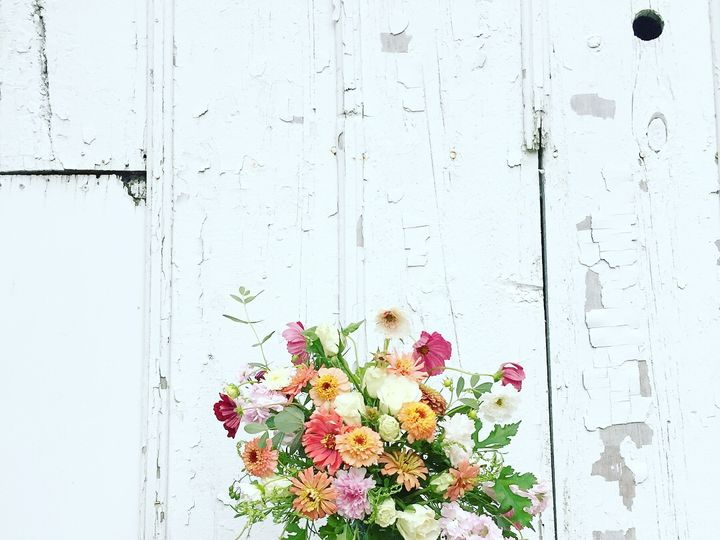 Tmx Img 7610 51 1048351 Madison, WI wedding florist